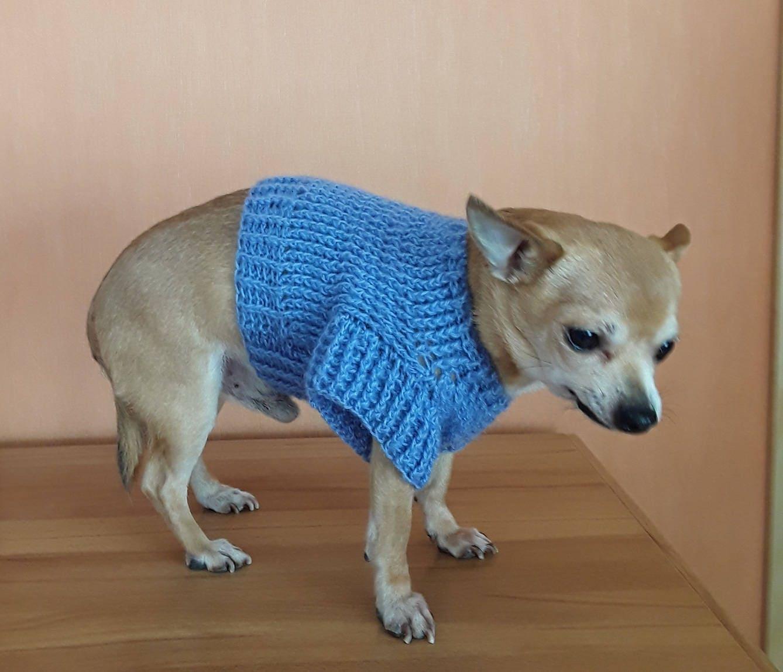 Enchanting Hund Häkeln Pullover Muster Ideas - Decke Stricken Muster ...