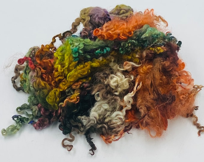 """Featured listing image: Hand Dyed """" Woodland """" Shorter Teeswater Locks, 50g"""