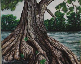 """10"""" x 8"""" Cypress Tree"""