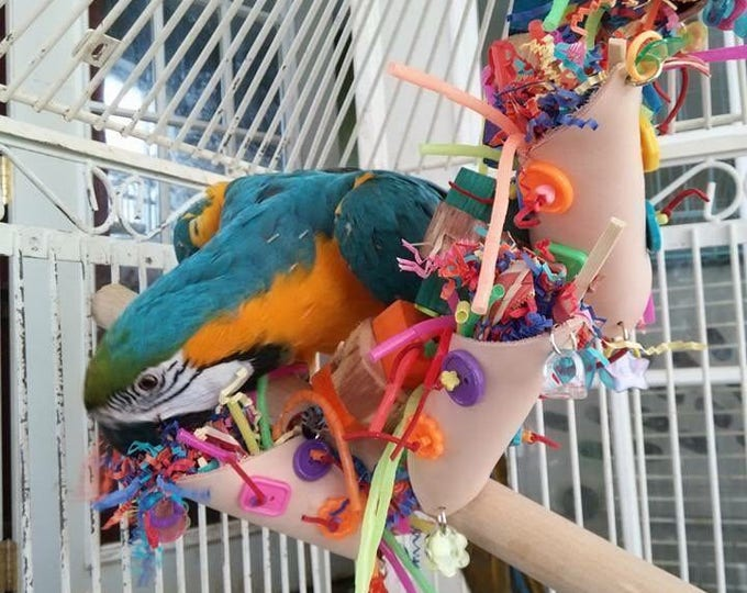 Featured listing image: Foraging Fiesta parrot toy