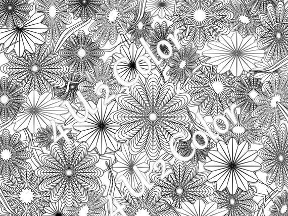 Star Flower Garden 1 Coloring Page Star Flower Garden Etsy