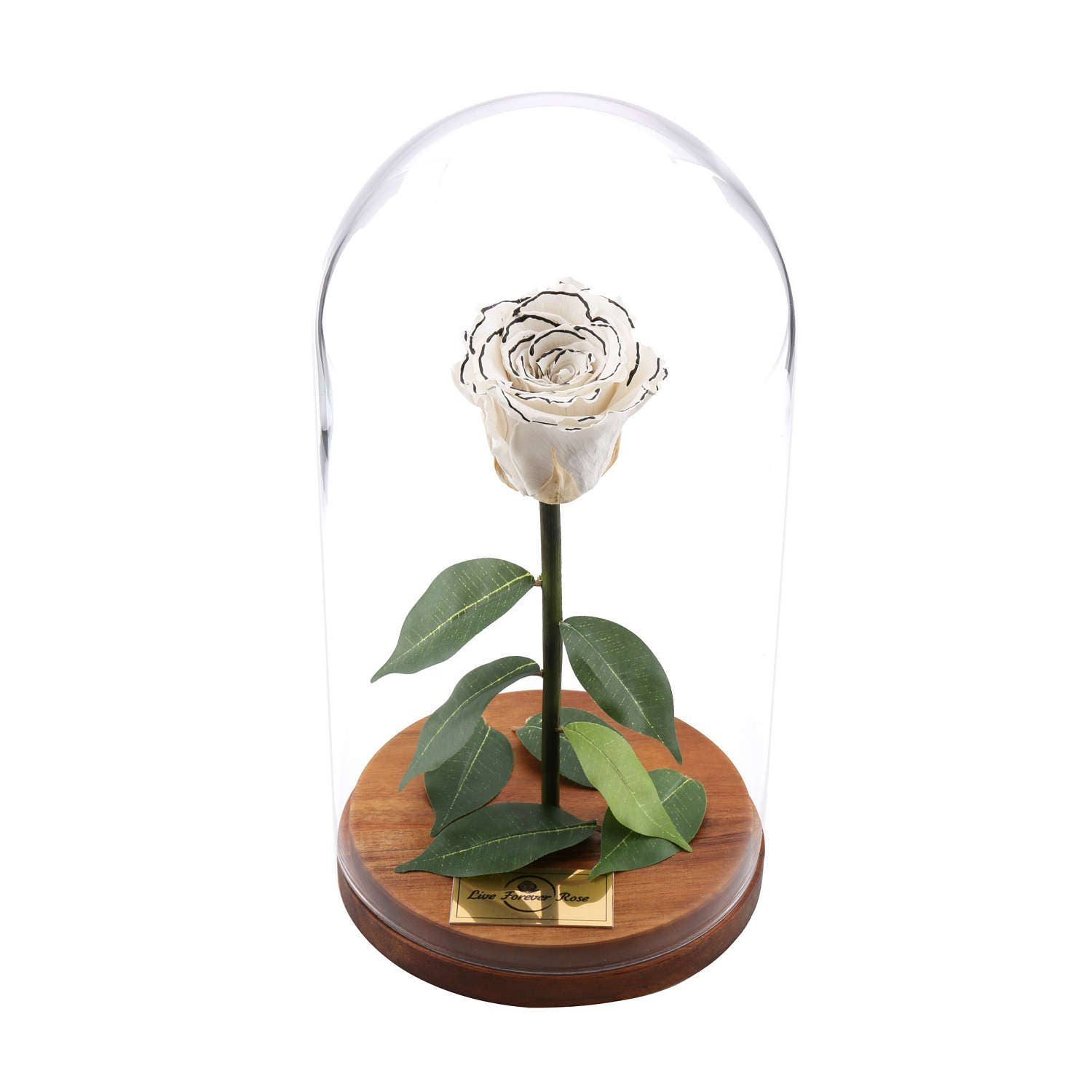 live forever rose in glass dome mothers day gift home decor etsy. Black Bedroom Furniture Sets. Home Design Ideas