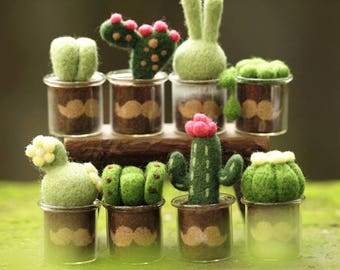 Needle felting kit - cactus moustache set