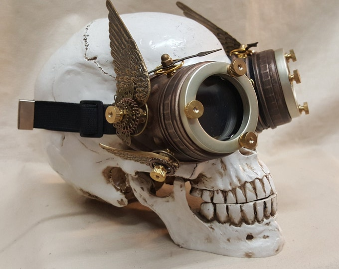 Steampunk Double Winged Brown Ragnarok Valkyrie Goggles