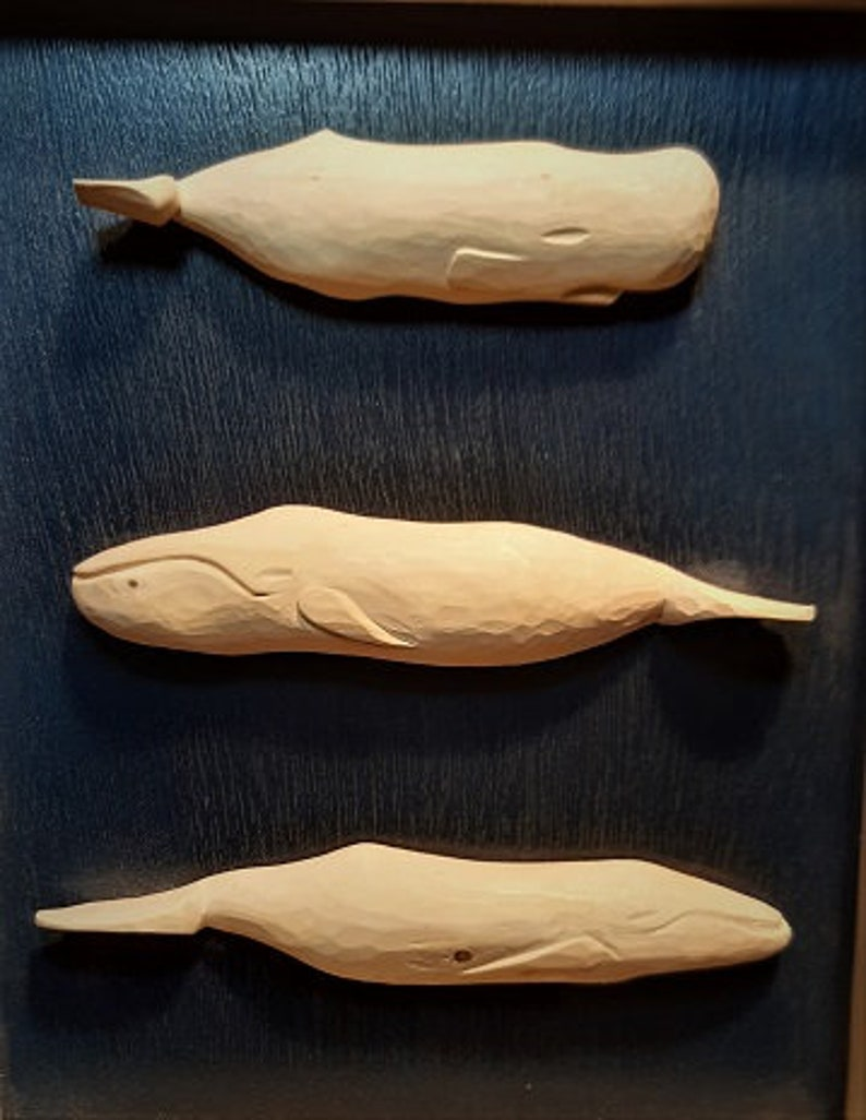 Whales and Cachalot