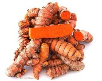 Fresh USDA certified Organic Turmeric Roots  1lb