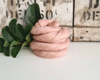 50g of Extra Fine Merino Wool Tops/Wool Roving    Shell    DHG Italy