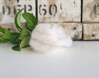 50g of Ramie Tops /Roving || Natural White || DHG Italy