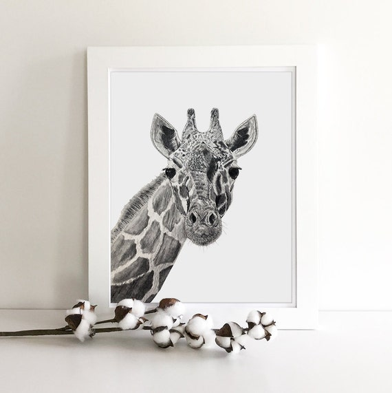 Jungle Animals - Zoo Animals - Giraffe Print - Zebra Print - Jungle Nursery - Nursery Safari Decor - Giraffe Art - Zebra Decor