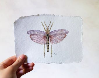 Original Watercolor Insect / Handmade Cotton Paper / 5 x 7 in.
