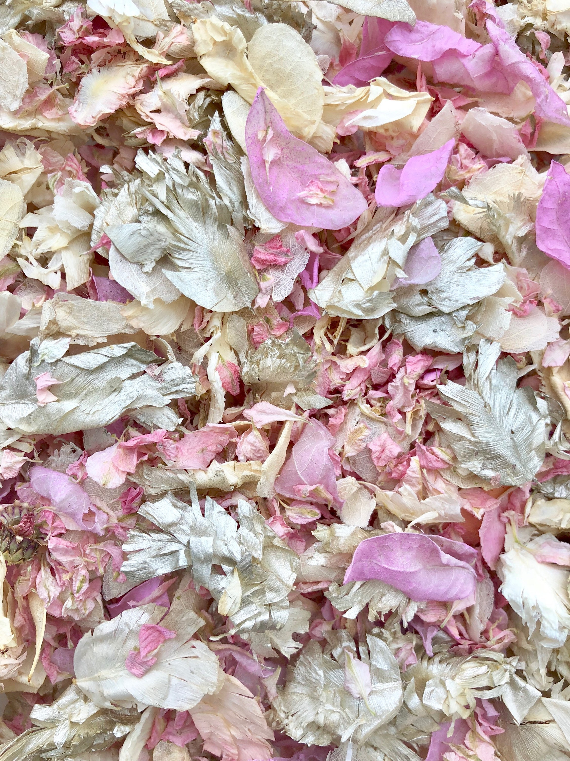 PPetal AUTUMN mix Biodegradable WEDDING CONFETTI Dried IVORY PP