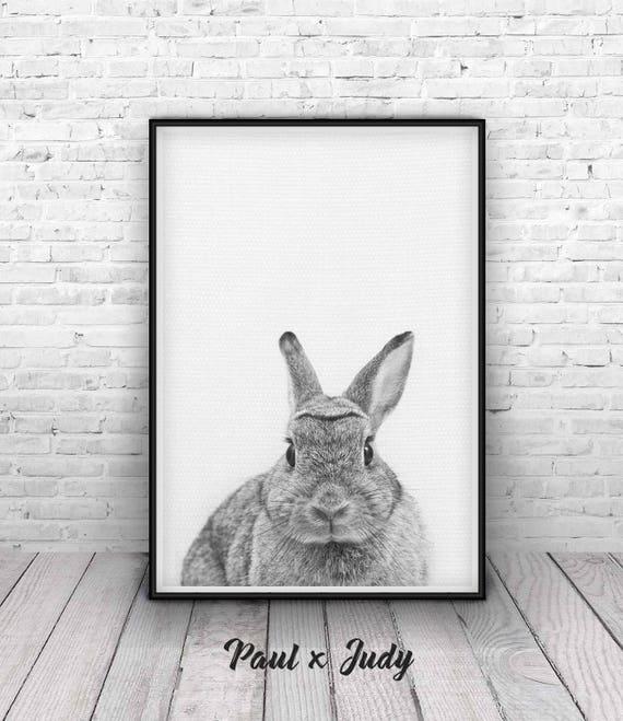 A1 A2 A3 A4 A5 Hare Woodland Animal Head Vintage Art Print Poster