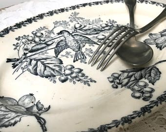 French vintage oval presentation dish / blue and white faience / transferware / bird, fruits and flowers / 19th century