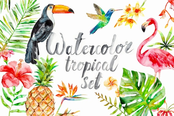 Watercolor Tropical Clipart summer flamingo flower | Etsy