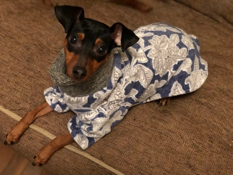 Luxe fleece blue floral Poncho Dog Coat