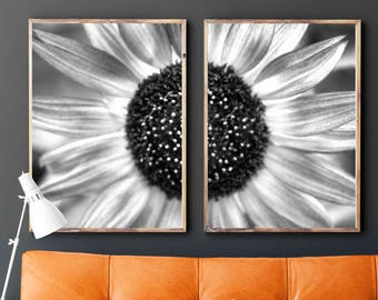 Black and White Photo, Black and White Wall Art, Printable, Printable Art, Instant Digital Download, Photo Set of 2, Sunflower, Flower Photo