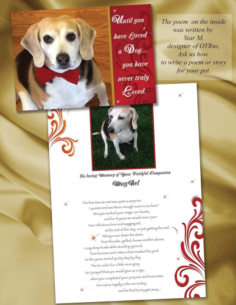 Until you Loved a Dog, Rainbow Bridge Card, Rainbow Bridge dog, Rainbow  Bridge poem, Pet Sympathy card, Dog Sympathy card, OvertheRainbowUS