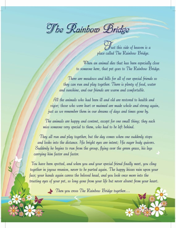 image regarding Rainbow Bridge Printable referred to as Rainbow Bridge Electronic Print, Rainbow Bridge Poem, Rainbow Bridge pet dog, Rainbow Bridge cat, Rainbow Bridge present, Canine reduction,More than the Rainbow US