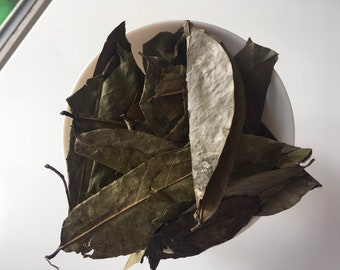 Soursop Leaves (Jamaican)