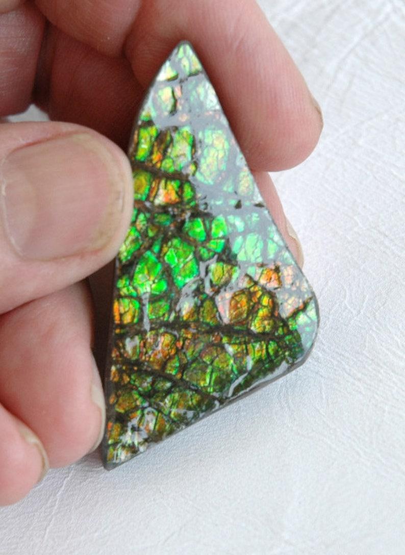 Ancient Ammolite Freeform Cabochon C476