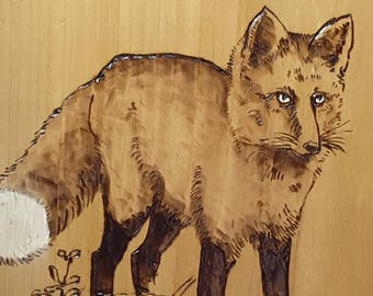 Red Fox, wood burning with painted highlights