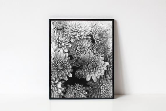 Photography Wall Art Black And White Photography Nature Etsy