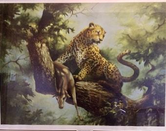 "Douglas Van Howd ""High Vantage Point""  Cheetah Limited Edition Hors D' Commerce Print HC  / 750"