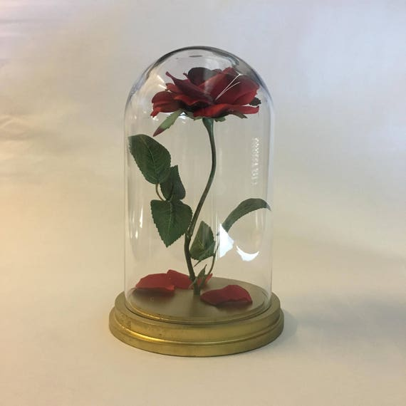 beauty and the beast rose enchanted rose rose in glass dome etsy. Black Bedroom Furniture Sets. Home Design Ideas