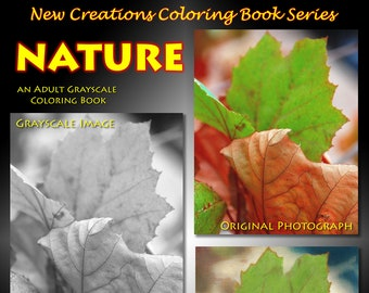 New Creations Coloring Book Series: NATURE