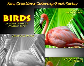 New Creations Coloring Book Series: BIRDS