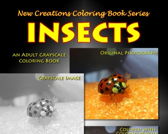 New Creations Coloring Books: INSECTS
