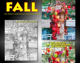 New Creations Coloring Book Series:  FALL