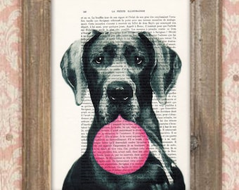 Great Dane Print, Bubblegum, French design, black and white,dog poster, Art Print on recycled french book page