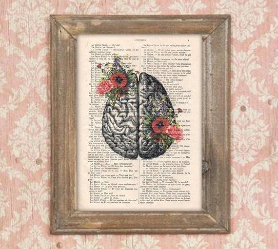 Anatomie Gehirn Blume Anatomie Druck Mohn menschlichen   Etsy