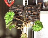 Designer Hanging Pots for All types of plants Handmade Flower Pot for Orchids Flowers Upside Down Slot for planting 15mm (0.6 quot )