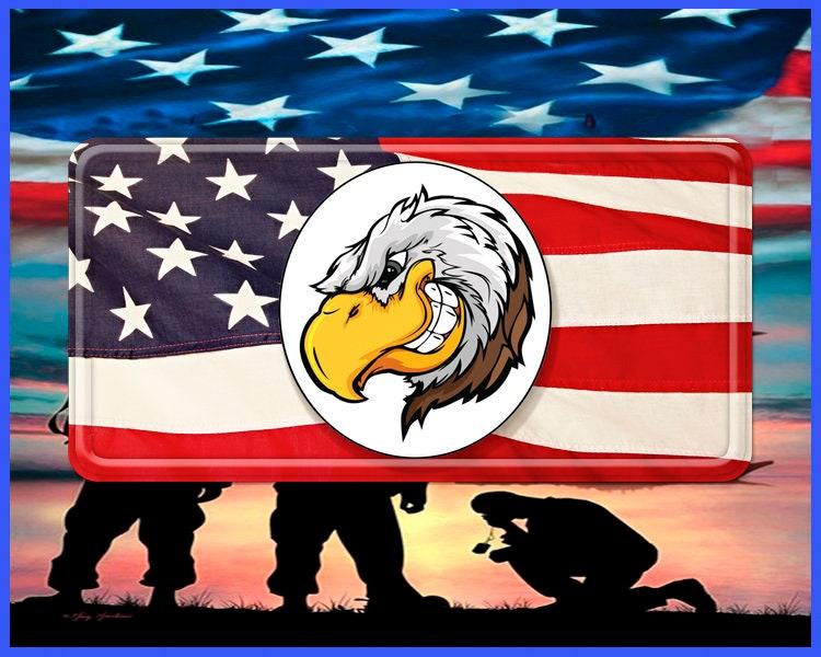 Bald Eagle American Symbol Military Symbol Military Honor