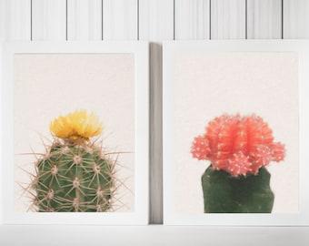 2 PC. Cactus Digital Download Photo Set, Minimalist Photography, Succulent Wall Art, Fine Art Photography, Cactus Photo, Apartment Decor
