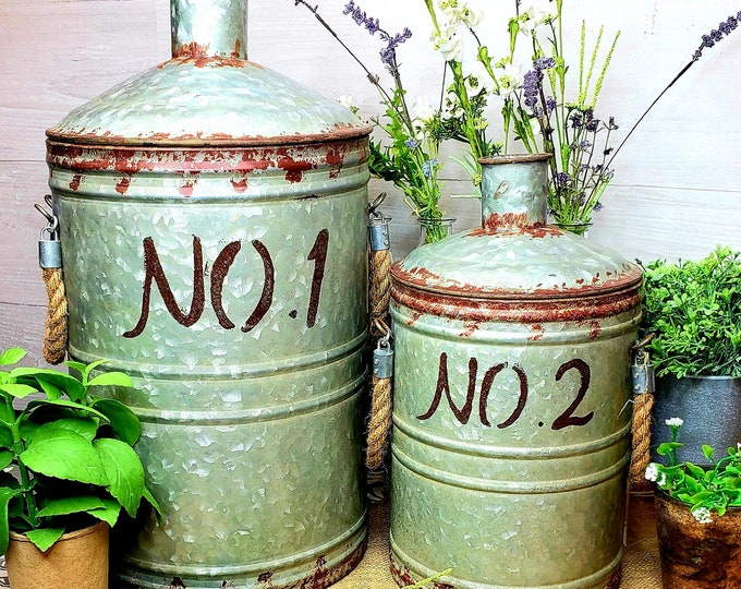 Metal Jugs Set of 2