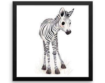 Animal Framed Nursery Print – Baby Zebra