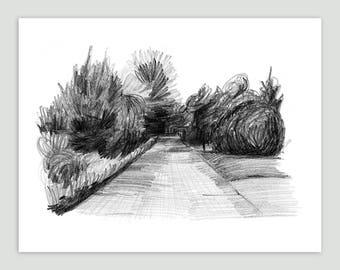 Chatham Path, Cape Cod – Fine Art Print of Original Pencil Drawing