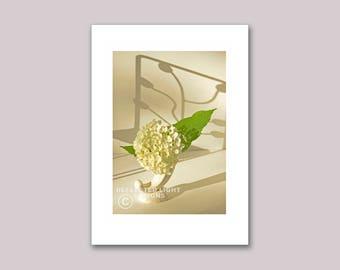 Photo Note Card, Deco Hydrangea