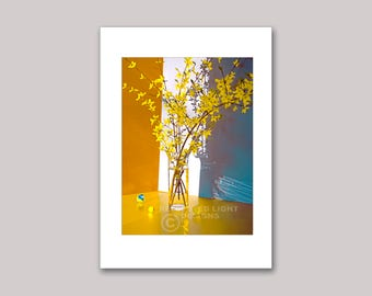 Photo Note Card, Forsythia & Marbles