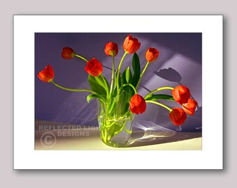 Photo Note Card. Red Tulips and Shadows