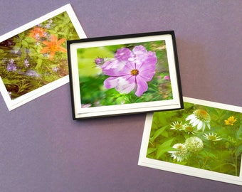 Boxed Set of 6 Garden Photo Note Cards