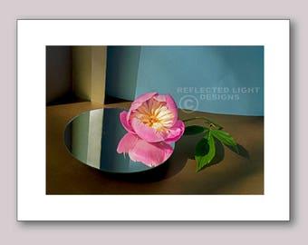 Photo Note Card, Peony & Reflection