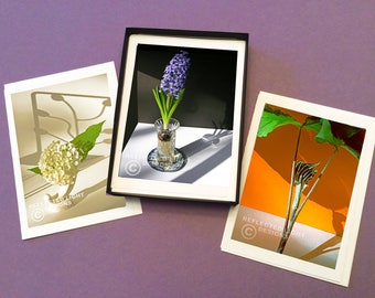 Boxed Set of 6 Flower & Shadows Photo Note Cards