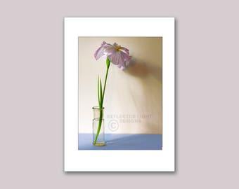 Photo Note Card, Siberian Iris
