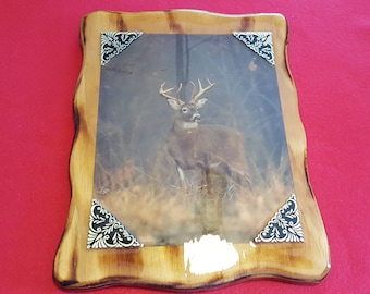 White-Tail Deer Plaque