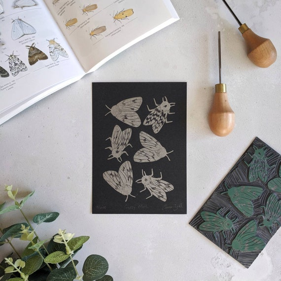 Gypsy Moth Limited Edition Linocut Print - Insect Wall Art