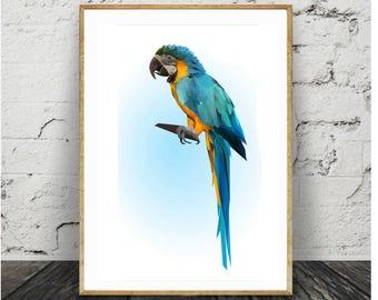 Blue-yellow parrot print,Macaw poster,Brazilian Ara,Big wild tropical bird art,Geometric art,Parrot sitting on a wooden branch,Tropical art